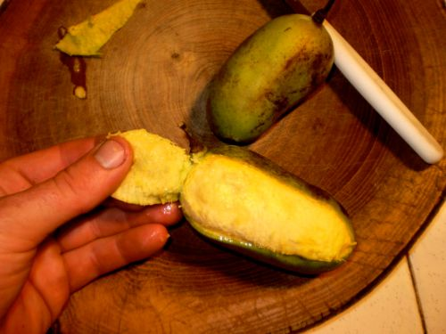 the yellow flesh of the paw paw