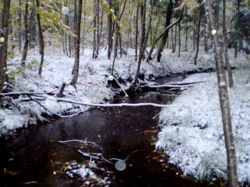 snow on the creek behind the yurt