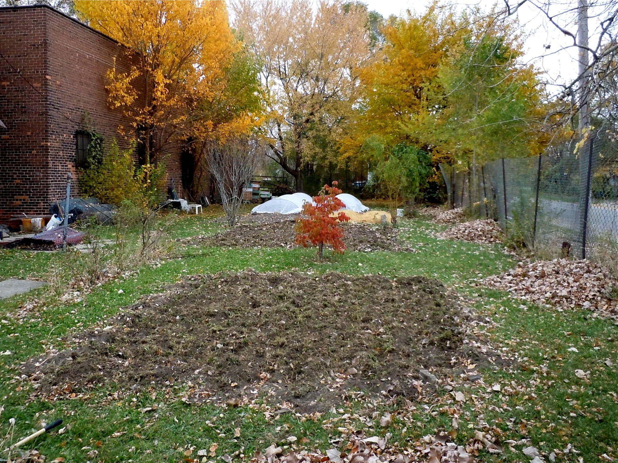 expanding the garden | little house on the urban prairie