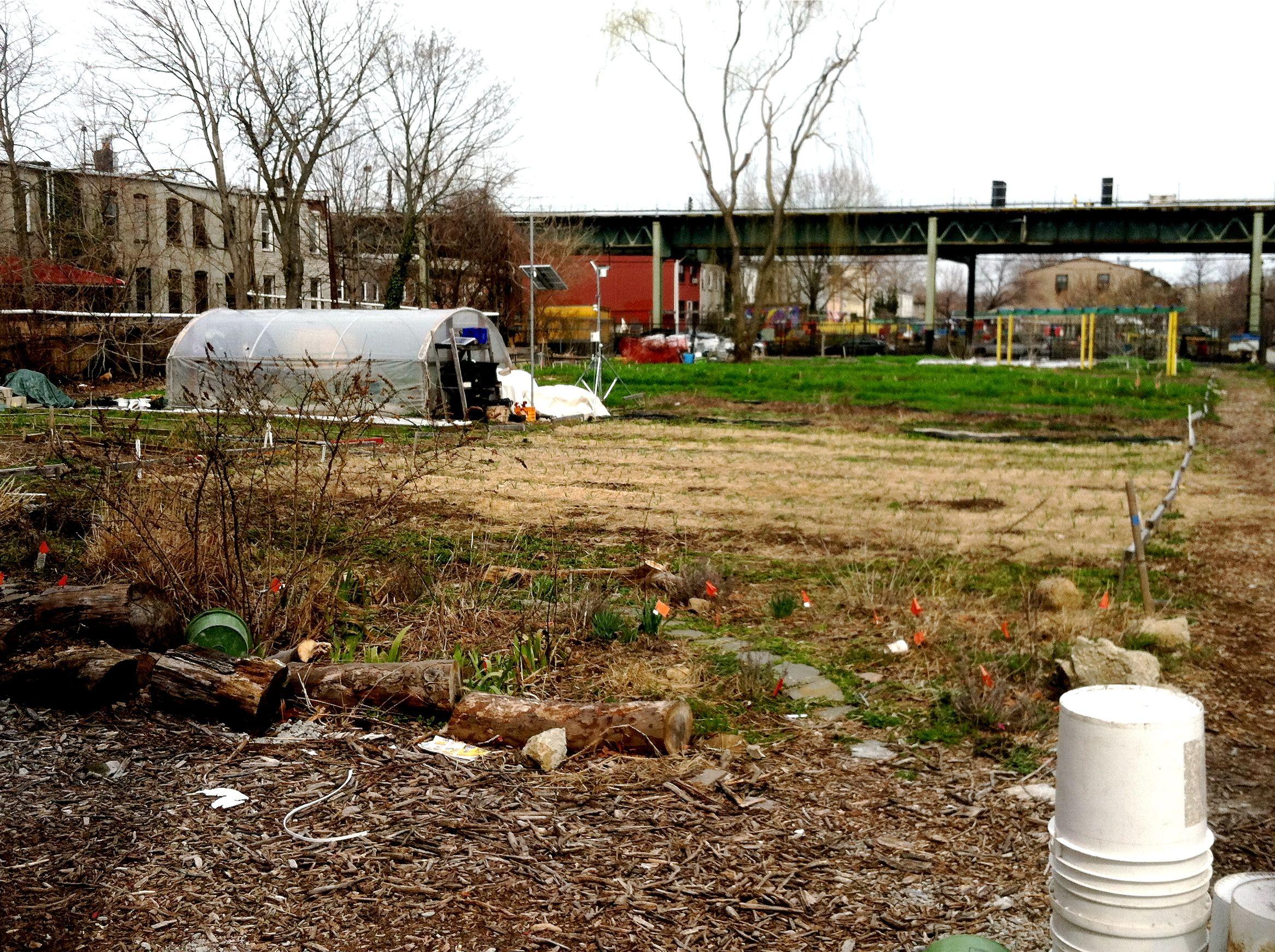 urban farm | little house on the urban prairie